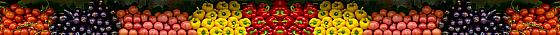 Fruit-divider