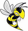 comp_wasp