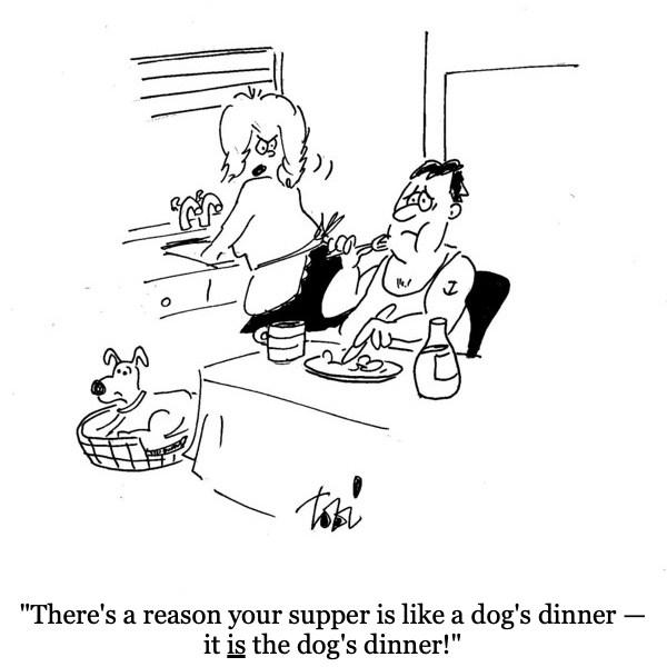 dogs_dinner.jpg